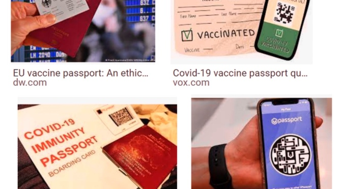 "Fake Heath Certificates Complicate the Already Messy ""Vax Pass"" Idea"